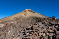 Wanderer, die auf vulkanischen Krater Teide in Teneriffa aufsteigen lizenzfreie stockbilder