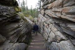 Wanderer, die unten in den trockenen Riverbed von a gehen Stockbild
