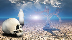 Wanderer on dried desert mud. With human skull in foreground Royalty Free Stock Image
