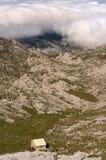 Wanderer in einem Schutz in den Bergen während einer Wanderung Lizenzfreie Stockbilder