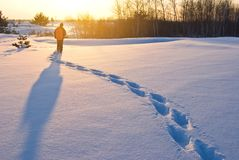 Wanderer in einem Winterwald Lizenzfreie Stockfotos