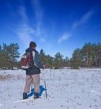 Wanderer in einem Winterwald Stockbild
