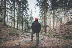 Wanderer Gebirgsim schwermütigen Landschaftsfrühjahr stockbilder