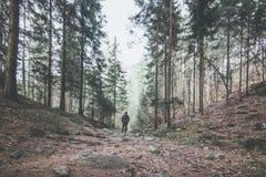 Wanderer Gebirgsim schwermütigen Landschaftsfrühjahr lizenzfreie stockfotografie