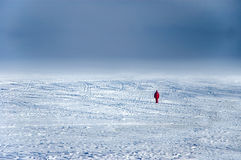 Wanderer on ice. Woman lost on ice Royalty Free Stock Image