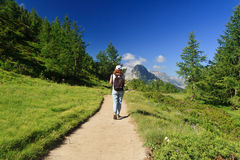 Wanderer im alpinen Pfad lizenzfreie stockfotografie