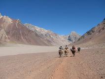 Wanderer im Berg Stockfotografie