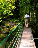 Wanderer im bulgarischen Wald lizenzfreie stockfotografie