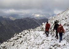 Wanderer im neuen Schnee, Lizenzfreie Stockfotos