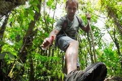Wanderer im tropischen Wald Stockbilder