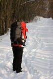 Wanderer im Wald Stockbilder