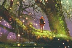 Wanderer mit dem Rucksack, der auf riesigem Baum steht lizenzfreie abbildung
