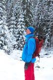 Wanderer mit dem Rucksack, der unter Schnee steht, bedeckte Kiefer Stockfotografie