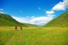 Wanderer mit Rucksäcken gehend durch eine Wiese mit üppigem Gras stockbild