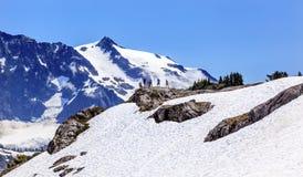 Wanderer-Schneefeld-Künstler Point Glaciers Mount Shuksan Washington Stockfotos