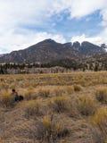 Wanderer sitzt und starrt entlang der Berge entlang der großen Sanddünen Nati an lizenzfreies stockbild