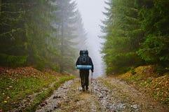 Wanderer-touristischer Vagabund im nebeligen Gebirgswald Lizenzfreie Stockfotografie