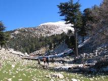 Wanderer unter einem Schnee mit einer Kappe bedeckten Berg Lizenzfreies Stockbild