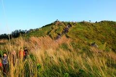 Wanderer Up Broga-Hügel 2 stockbild