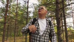Wanderer verlor im Wald stock video