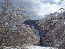 Wanderergesichtspunkt Nahaufnahmebeine mit den Schneeschuhen, die auf Schnee gehen, tauchen auf Snowshoeing auf frischem Schnee Lizenzfreie Stockfotografie