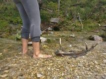 Wanderermädchen, das ihre Füße in einem kalten Nebenfluss abkühlt lizenzfreie stockfotos