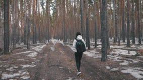 Wandererm?dchen mit Rucksack gehend in einen Kiefernwald, hintere Ansicht Aktiver Lebensstil und Abenteuer in der Natur der wild  stock video footage