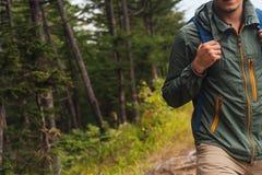 Wanderermann, der in Sommerwald geht Stockfoto