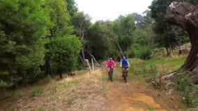 Wandererpaare, die in den Wald radfahren stock video footage