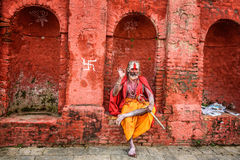 Wandering  Shaiva sadhu (holy man) in ancient Pashupatinath Temp Royalty Free Stock Image