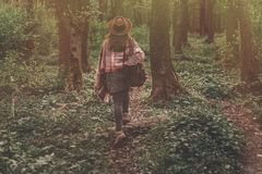 Wanderlust concept. stylish hipster girl in hat with backpack wa. Lking in woods in evening sunshine. bohemian woman traveler exploring in sunlight. space for Royalty Free Stock Images