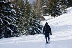 Wandern in Österreich Lizenzfreie Stockfotografie