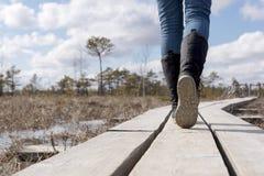 Wandern auf hölzerner Spur an Kemeri-Sumpf Das Gehen und das Trekking übertreffen lizenzfreies stockbild