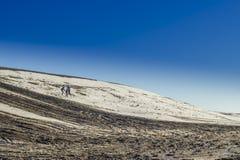 Wandern auf Schnee und Schlamm Stockfotos