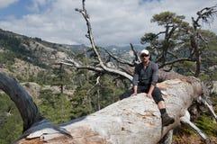 Wandern bei Korsika Stockbild
