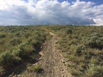 Wandern in den szenischen schönen Kamloops-Bergen Stockbild