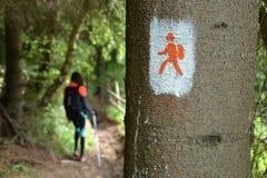 Wandern der jungen Frau stockfoto