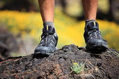Wandern der Schuhe stockbild