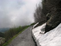 Wandern der Straße in der Schweiz Stockbilder