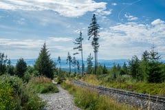 Wandern der Straße von Stary Smokovec zu Hrebienok-Berg in hohem Tatras stockfotografie