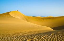 Wandern in der Wüste Stockbild