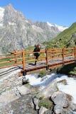 Wandern des Mädchens auf einer hölzernen Gebirgsbrücke stockfoto