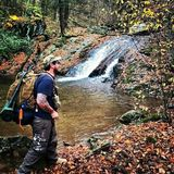 Wandern des Shenandoah Valleys stockfotografie