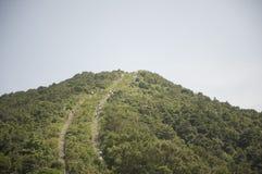 Wandern des Versuches auf einem steilen Berg   Stockfotos