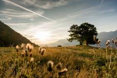 Wandern in die Alpen Lizenzfreie Stockbilder