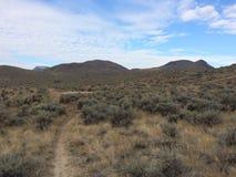 Wandern durch die Wüste Lizenzfreie Stockbilder