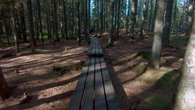 Wandern durch Holz auf Steg stock video footage