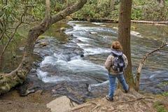 Wandern entlang Abrams-Nebenfluss in Cades-Bucht Lizenzfreies Stockfoto