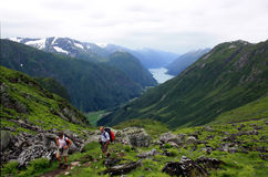 Wandern im Fjord Norwegen Stockfotografie