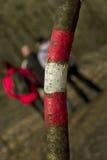 Wandern im Holz Lizenzfreie Stockfotografie